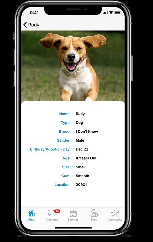 Pet services management system Client Database mobile view