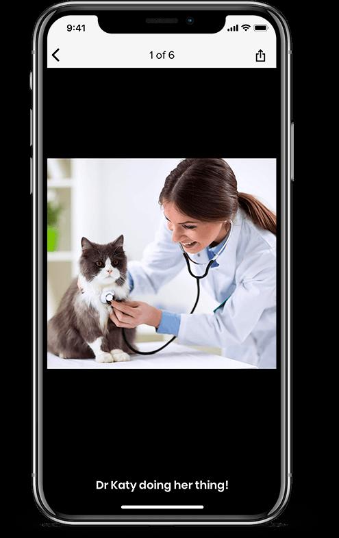 Pet services management hub photo gallery